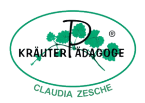 Herbal Hunter – zertifizierte Kräuterpädagogin der Gundermannschule