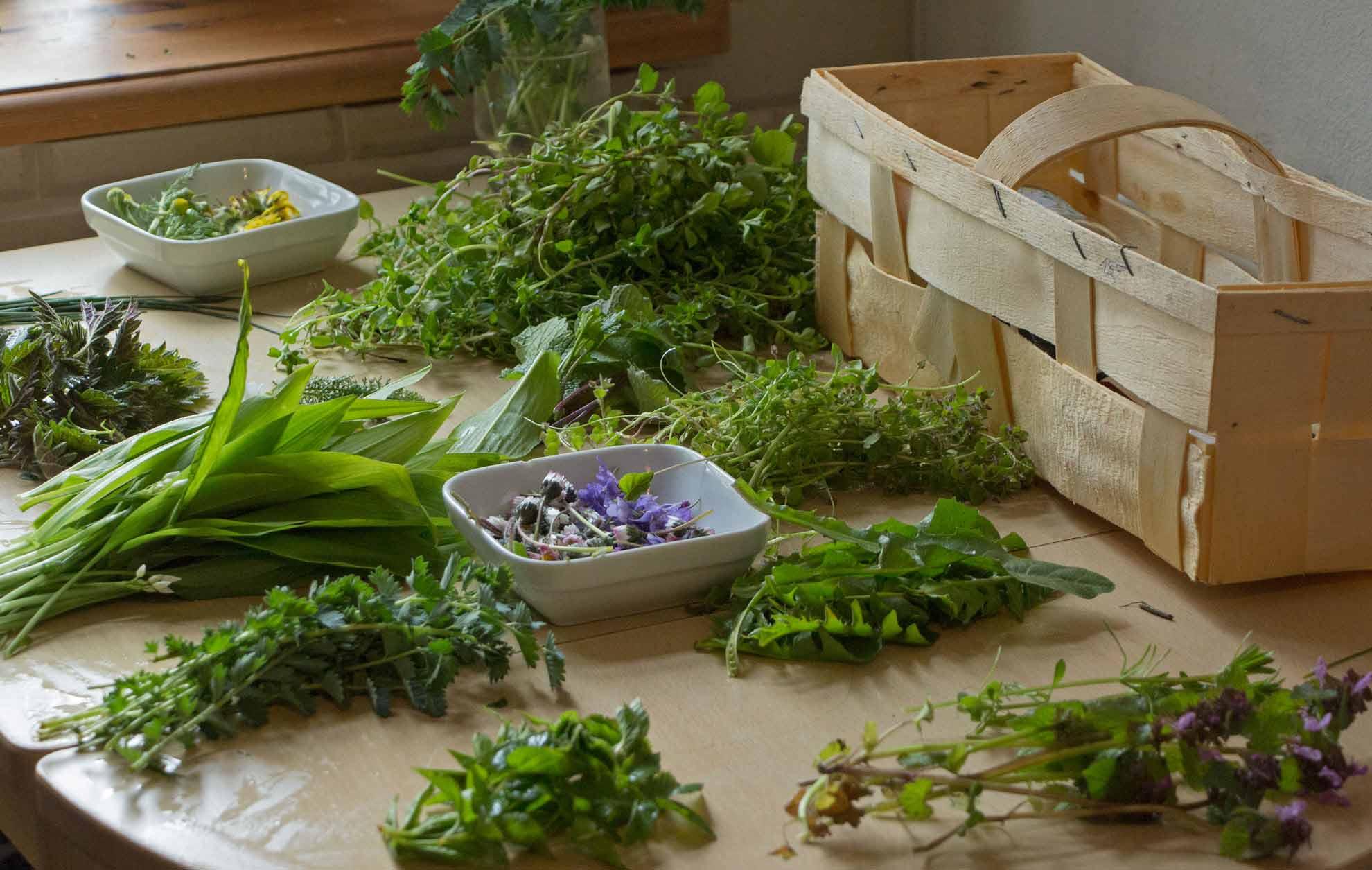 Herbal Hunter Kräuterblog Rezept Neunkräutersuppe