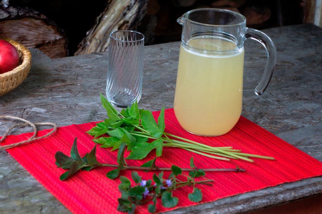 Zutaten für die erfrischend spritzige Herbal Hunter Giersch-Limonade