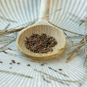 Knoblauchsrauke essbare Wildsamen Herbal Hunter digitales Herbarium