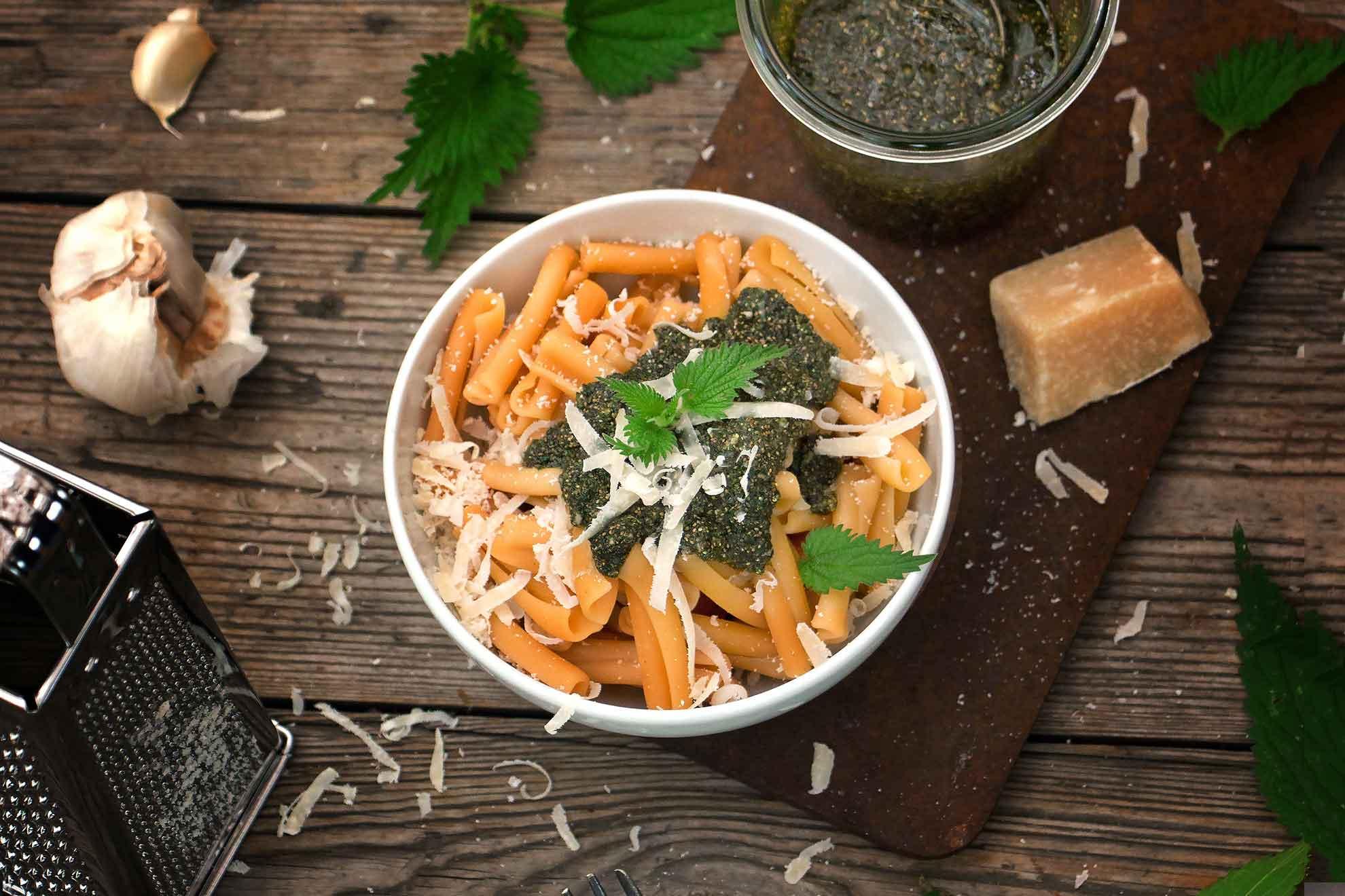 Brennnessel-Samen-Pesto selber machen – Rezept aus der Herbal Hunter Kräuterküche