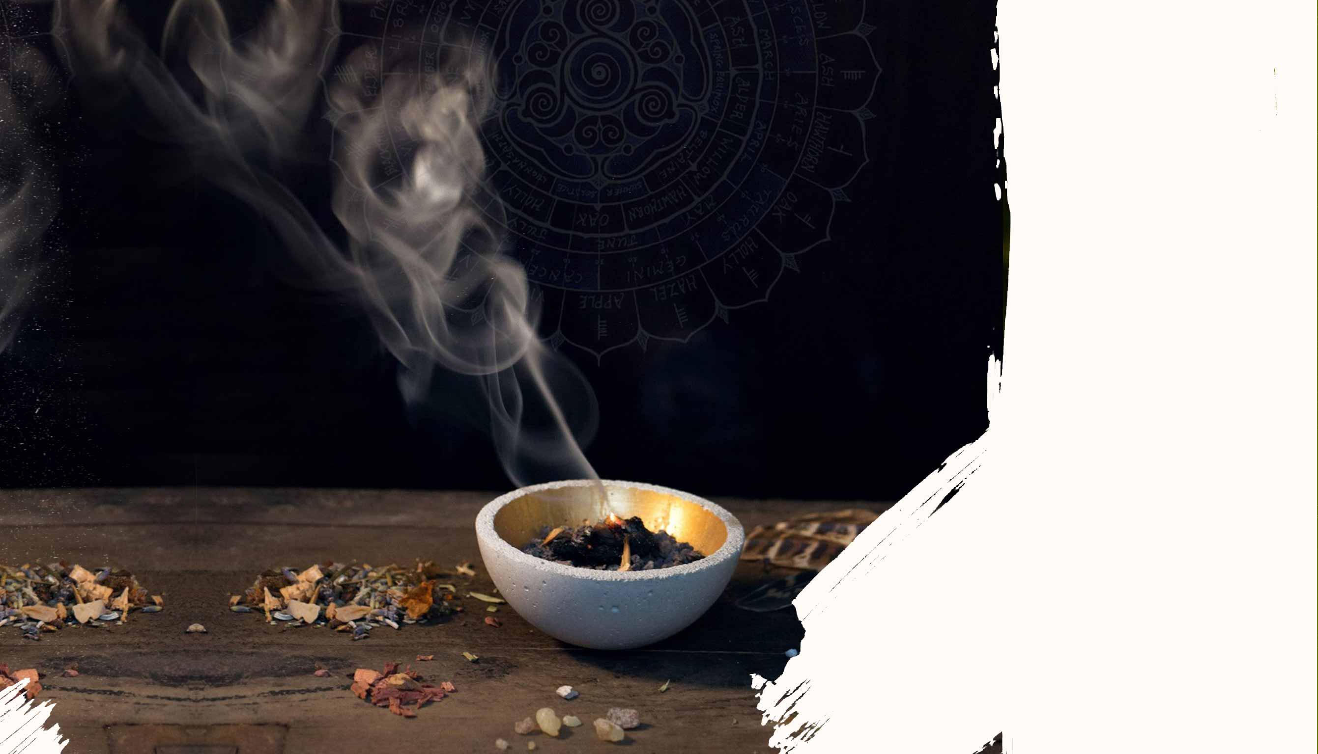 Der Herbal Hunter Kräuterkalender. Hier findest du ausgewählte Veranstaltungen und Ausflugstipps für Kräuterjäger, Naturfreunde, Barfußläufer, Entdecker, Beobachter und solche, die es werden wollen.