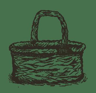 Gesammeltes Kräuterwissen – essbare Wildpflanzen bestimmen