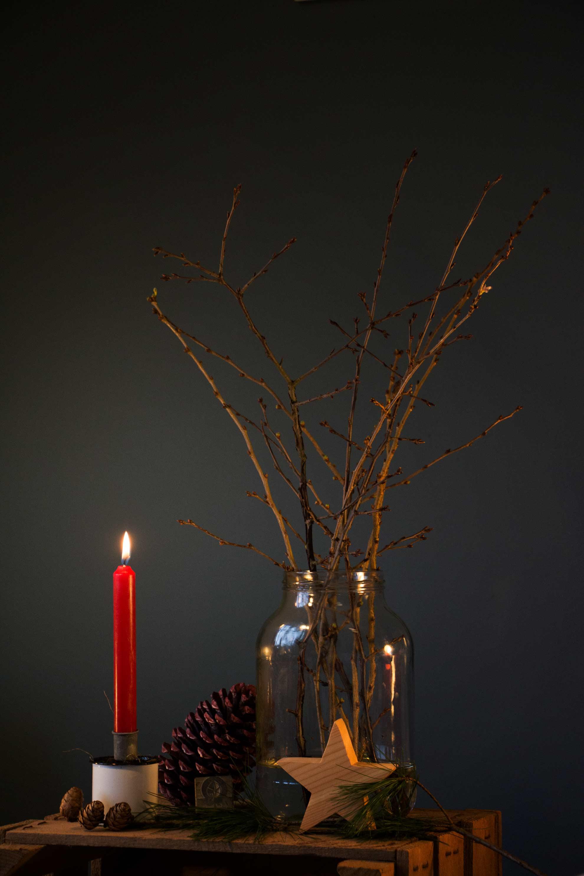 In der Adventszeit ins Wasser gestellte Zweige, die Barbara Zweige erblühen an Weihnachten bringen Glück und Licht.