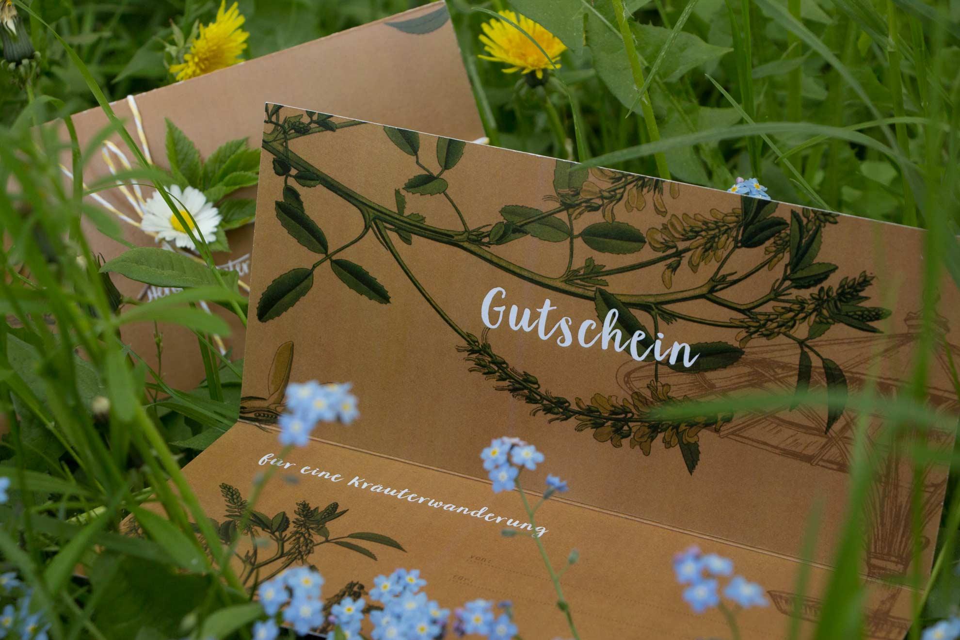 Gutschein für eine Kräuterwanderung in Potsdam – Hier findest du den Herbal Hunter Gutschein als Geschenkidee für Kräuterwanderung in Potsdam nach Wahl.