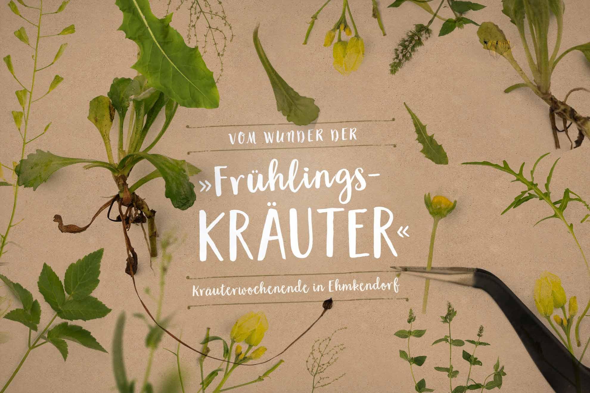 Herbal Hunter Kräuterwochenende im Wildkräuterhotel »Gutshaus Ehmkendorf« – Für ein Wochenende widmen wir uns ganz den Wildkräutern des Frühlings.