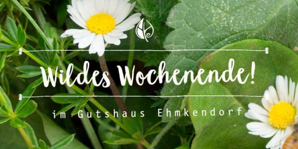 Wildes Wochenende im Wildkräuterhotel Gutshaus Ehmkendorf – Herbal Hunter Workshop