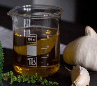 Herbal Hunter Kräuterküche Brennnesselpesto – Rezept