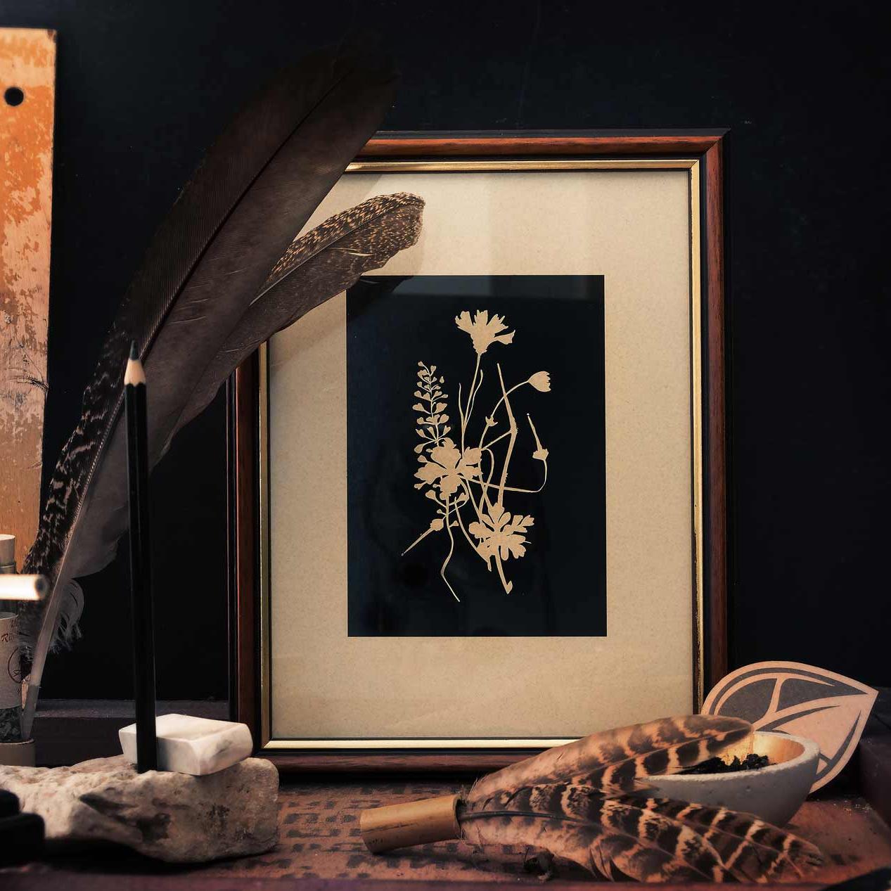 Herbal Hunter – Kräuterpost – Hier kannst du den wilden Herbal Hunter Newsletter abonnieren. Saisonales Kräuterwissen, Kräuter-Termine und sehenswerte Ausflugtsipps, sowie Neuigkeiten aus Wald und Wiese. Direkt in dein Postfach wilde Kräuterpost jetzt abonnieren!