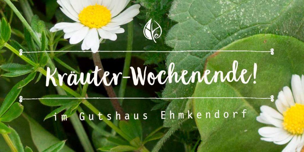 Kräuterblog – Wildes Kräuterwochende im Gutshof Ehmkendorf mit dem Herbal Hunter 2019