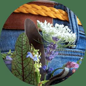 Kräuterwissen für die Hosentasche