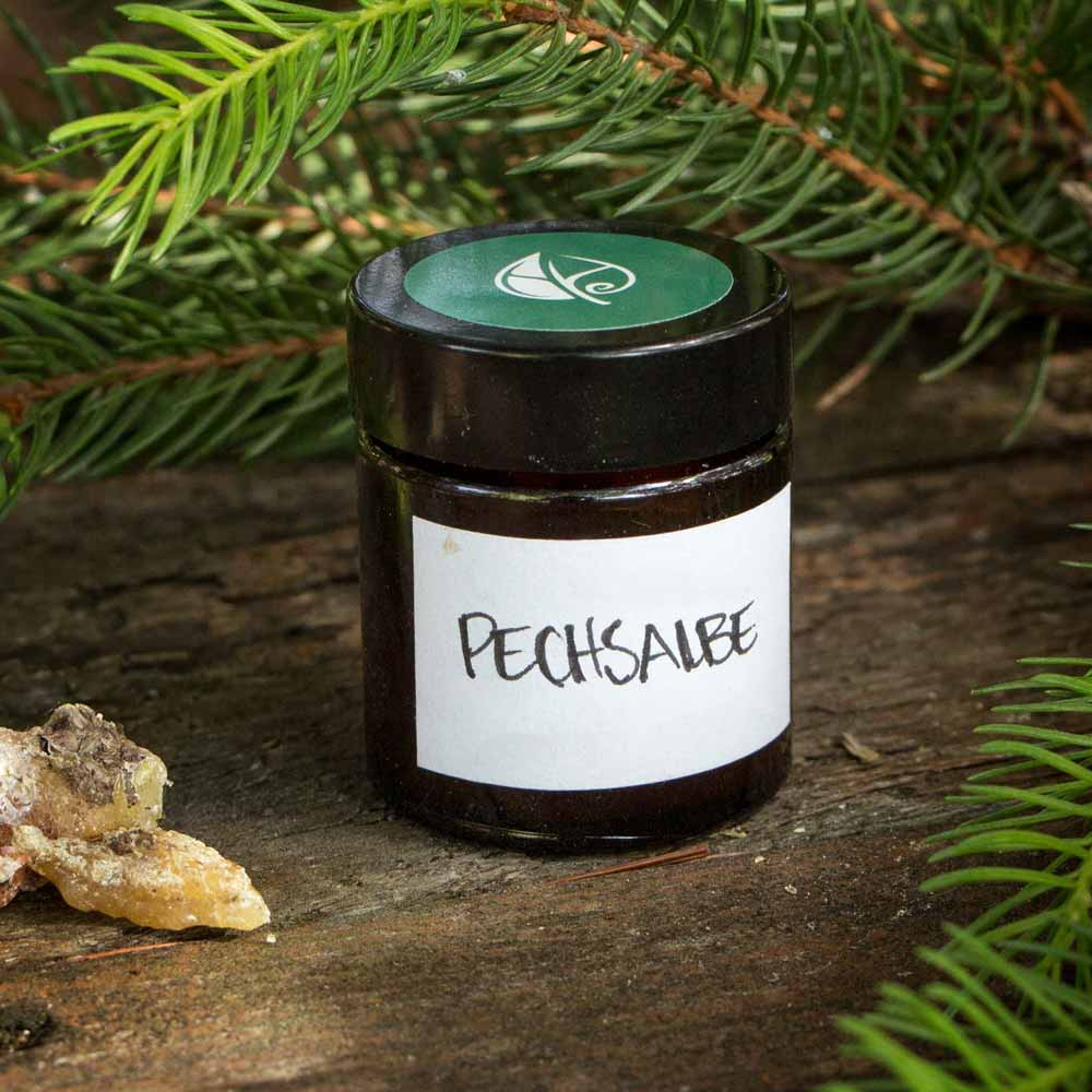 Herbal Hunter Kräuterblog Pechsalbe selbst herstellen