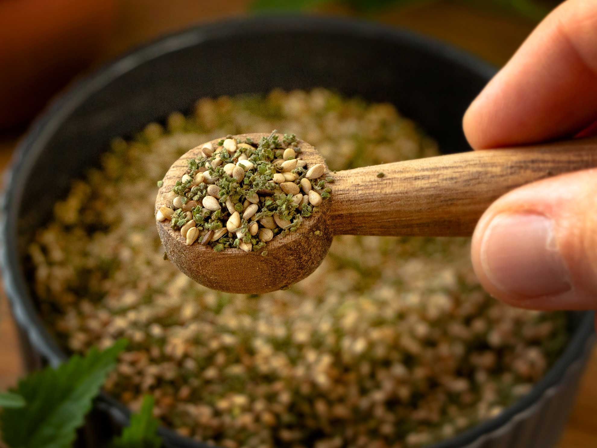 Brennnesselsamen-Gomasio Rezept – Herbal Hunter – saisonale Kräuterküche