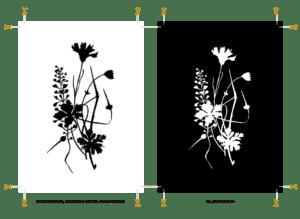 Herbal Hunter-Kräuterpost Dankeschön! Kräuter-Illustration »Wilde Wiesenkräuter, Hirtentäschel, Kornblume und Storchenschnabel