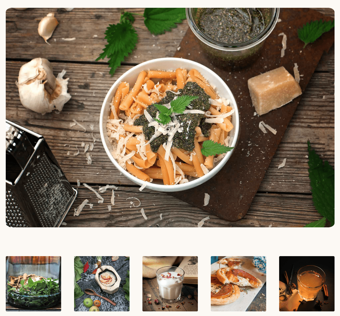 Wildkräuterrezepte für jede Jahreszeit Herbal Hunter – saisonale Wildkräuterküche